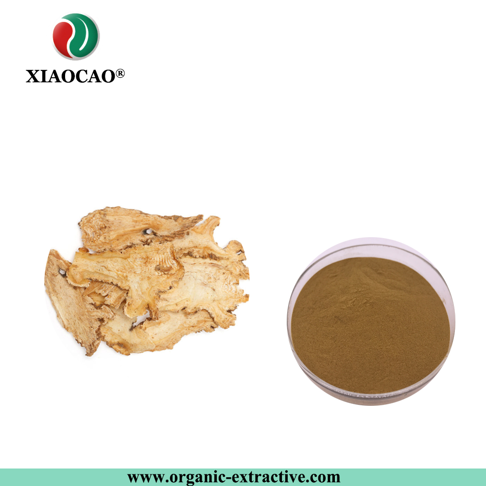Factory Supply Dong Quai Root Extract 10:1 Cas no.:4431-01-0