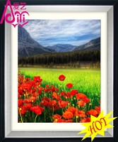 YIWU KAINA RED FLOWERS AND GREEN GRASS HOT OIL PAINTING PHOTO IMAGE WALL DIY CRYSTAL DIAMOND HOME DECOR OIL PAINTING