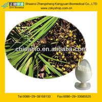 GMP Certified Factory Supply Saw Palmetto Berry Extract
