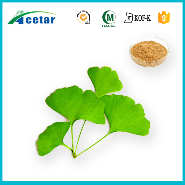 Factory Supply: ginkgo biloba extract 24% Flavones 6.0% lactones by HPLC