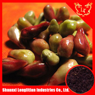 organic and 100% natural grape seed extract (high orac value)