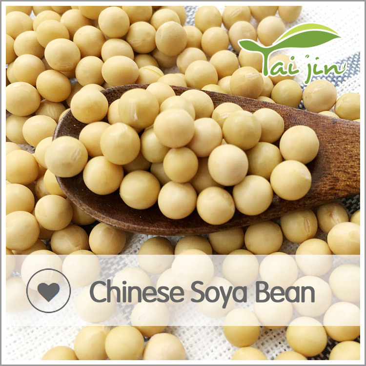 Specification of high quality soy bean