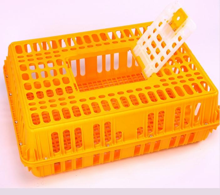 MAKER pigeon basket for training,transport cage