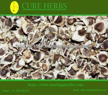 Natural Moringa seeds for oil extraction