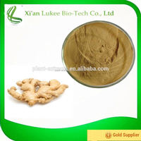 High Quality Ginger Extract Ginger Root Extract/Gingerols 5% 6% 15% Curcumin 95% Ginger Powder