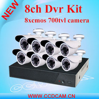 8CH DVR kit professional surveillance security system H.264 DVR and 8 Outdoor IR Cameras CCTV kit