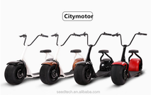 Pleasedin 2016 citycoco 2 wheel electric scooter, adult big wheels electric motorcycle