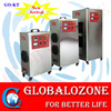 Mobile ozone generator for spa pool or irrigation water treatment