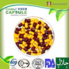 High quality empty hard gelatin printed capsules manufacturer