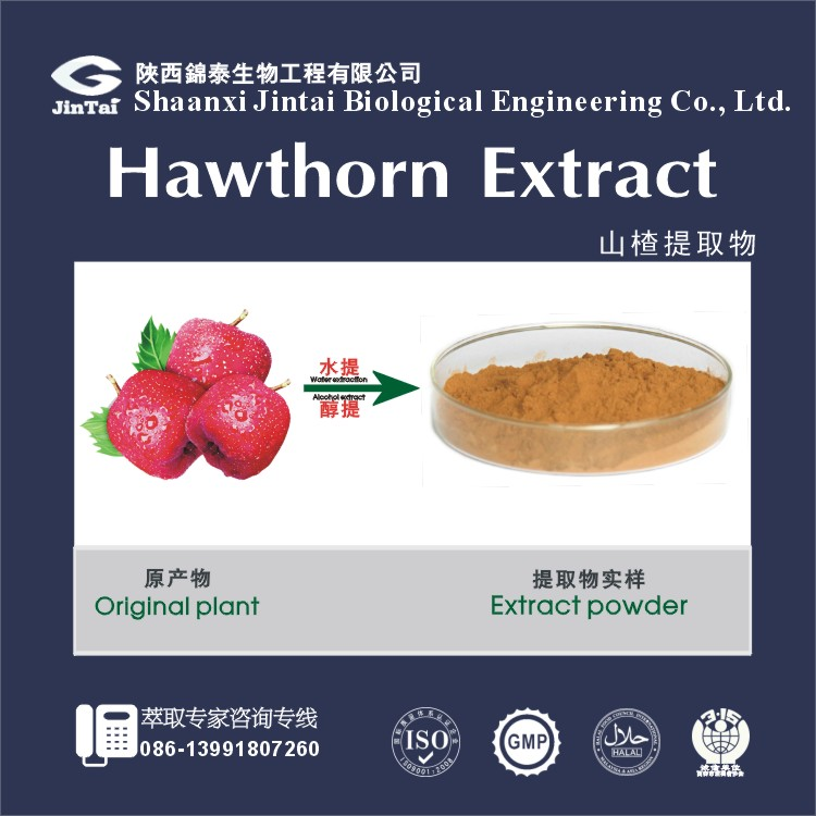 natural food supplement hawthorn berry fruit extract