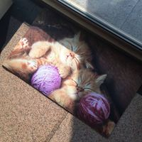 Pet Dog Cat Printed Floor Mats For Walmart Target Lidl