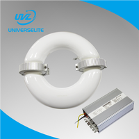 professional lighting manufacturer 40-300w Round Tubular Induction Lamp and ballast