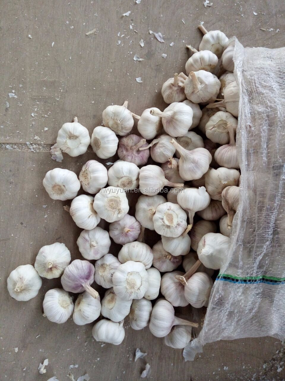 YUYUAN brand hot sail fresh garlic china garlic price 2016