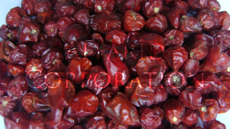 Dried Red Chili Pakistan