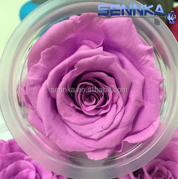 Appealing forerver long stem preserved <strong>flowers</strong> purple roses on sale wedding <strong>flowers</strong> from china