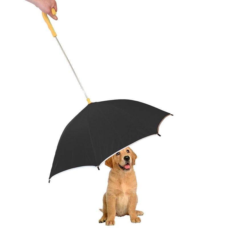 pet dog umbrella.jpg