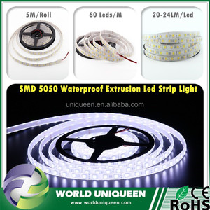 Worlduniqueen New Technology IP68 SMD5050 Led Strip , Durable Silicone Rubber Extrusion Led Strip Light 5050 12V