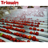 Industrial automatic tomato sauce ketchup production line plant