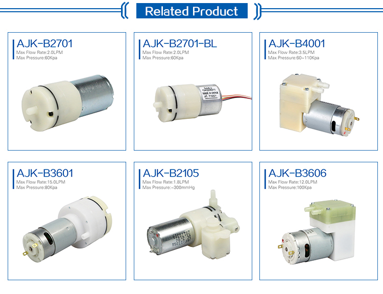 High Preference Customized Accepted 24V Diaphragm Micro Air Pump