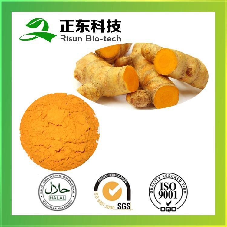 100% naturals raw material extract 95% Curcumin powder form Curcumin