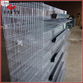 H Type Wire Mesh Quail Cage( Best Quality, Competitive Price )