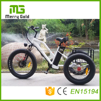 500w brushless motor three wheel fat tire electric delivery tricycle trike with strong power