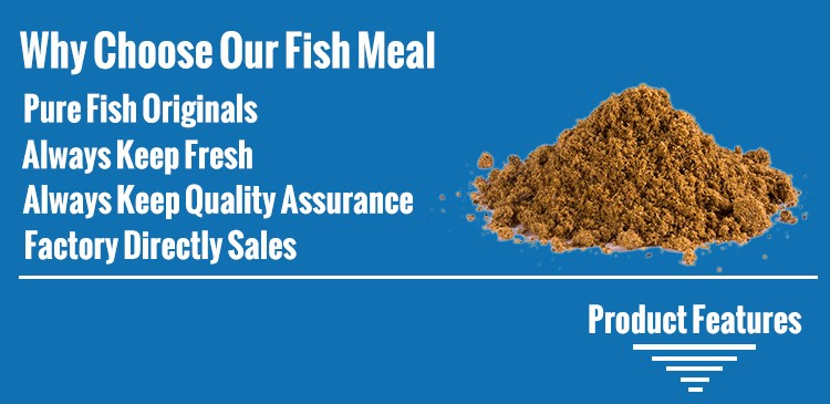 Fish meal fertilizer 65 protein buy fish meal fertilizer for Fish meal fertilizer