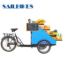 3 wheel pedal assit electric cargo tricycle with basket