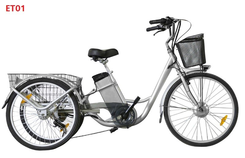 adults three wheels electric bikes imported