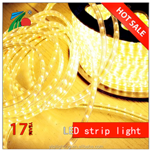 Warm White 5050 IP65 220V CE RoHS Certified Strips Led Light for Party
