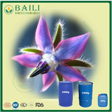 RAW Material Borage Oil