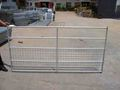 2mx0.97m Hot dipped galvanized Sheep fence with welded wire