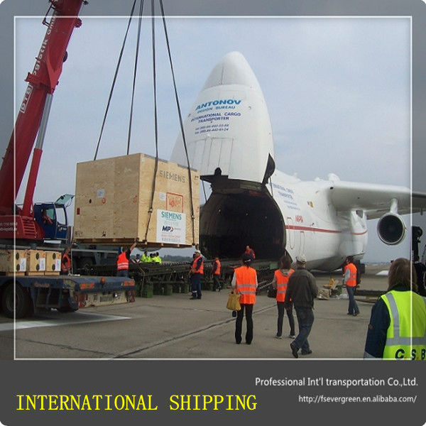 International Shipping with Insurance Service