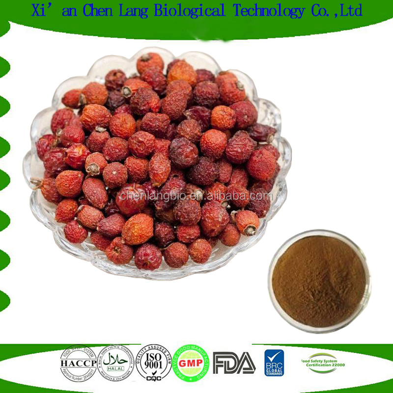 25 Kg Drum for Herbal Plant Extract Polyphenol Rose Hip Extract