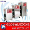 Commercial ozone generator 6000mg industrial o3 air sterilized equipment