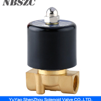 2W High Quality Diaphragm Type 220v