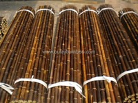 Natural Clean Dry Straight Cheap Treated Black Bamboo Poles
