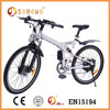 250W electric bicycle foldable