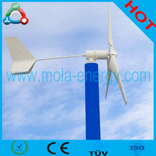 Chinese Hot Sale Micro Wind Power 300w 600w 1kw