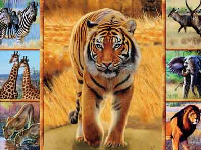 Animal 3d lenticular animal picture frame