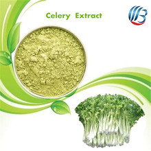 LanBing supply high quality organic celery juice powder celery leaf extract