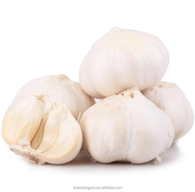 Shandong 2016 Fresh Garlic Price