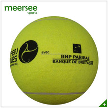 Tennis ball for signature and fans
