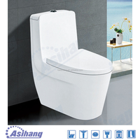 Foshan wash down one piece toilet bowl s trap p trap water closet for hotel