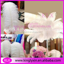 Wholesale Cheap White Ostrich Feather For Wedding Centerpieces