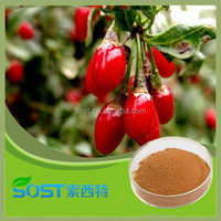best price natural barbary wolfberry fruit extract