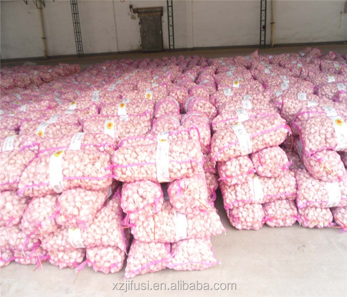 High grade garlic price of 2013 natural garlic