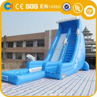 Commercial inflatable dolphin water slide with pool inflatable water slide inflatable slide for rental