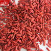 Hot sale free samples wholesale top quality malaysia goji berry