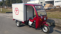 Petrol Three Wheel Motor Tricycle / Tricycle Motorcycle With Food Box Close Body Type On Sale